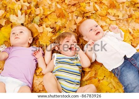 Three cute babies lie on yellow leaves