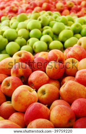 Three different apple varieties at a fruit farm
