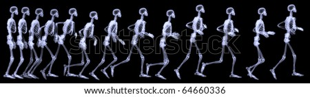 Three dimensional rendering illustration,sequenced radiography of a human skeleton running.