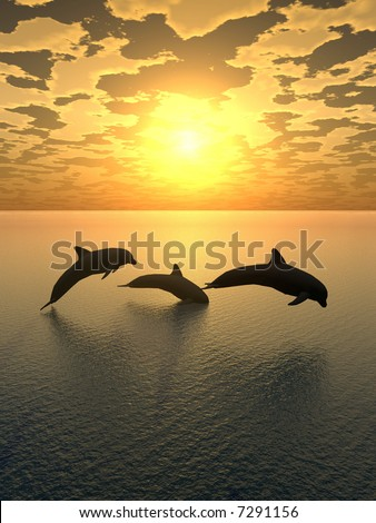 Three dolphins floating at ocean