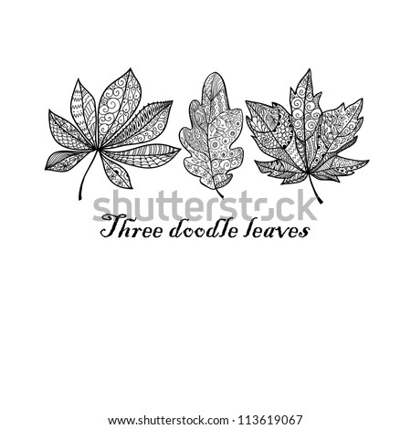 Three doodle textured leaves background. Raster.