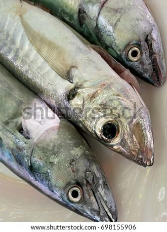 three fish heads #698155906