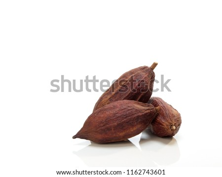 Three Fresh cacao pods isolated on a white background