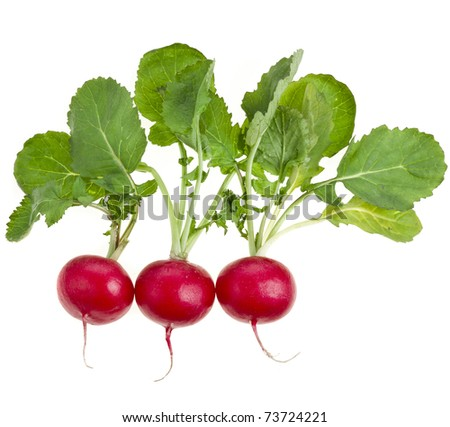 Three Fresh radishes isolated on white background