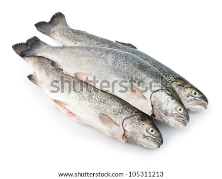 Three fresh trout fish isolated on white background diagonal