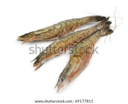 Three frozen tiger shrimps