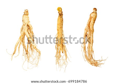 three ginseng root isolate on white background