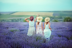 Three girls in straw hats on a lavender field walk and enjoy the evening. View from the back. One girl points up at the sky. Concept of freedom, rest and relaxation