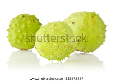 Three green chestnuts over a white background