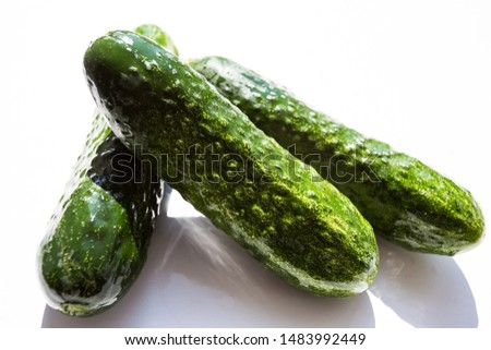 Three green cucumbers on a white background #1483992449