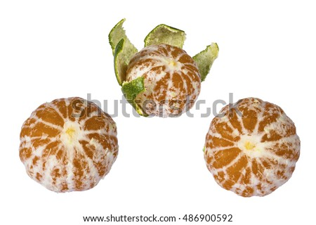 three green peeled tangerine isolated on white background Stok fotoğraf ©