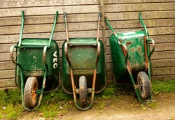 Three Green Rusty Wheelbarrows leaning against the wooden fence