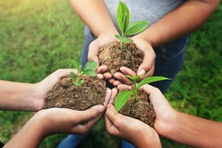 three hand holding young Plant and standing group. nurture Environmental concept