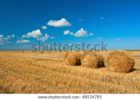 three hay stacks on filed