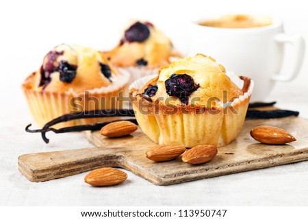 Three Homemade Blueberry Muffin cupcakes on white background