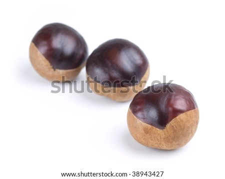 Three horse chestnuts isolated on white