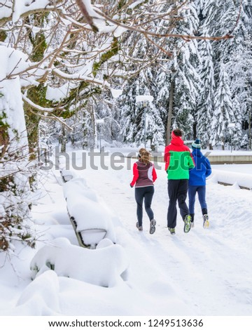 three joggers during running workout in wintry nature #1249513636