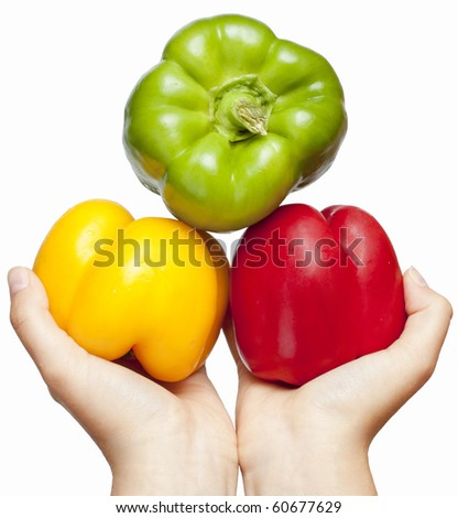 Three juicy, ripe peppers kept in womens hands. / Colorful peppers on hands