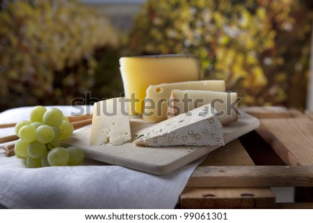 Three kinds of french cheese and white grapes