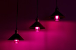 Three lamps with vintage incandescent bulbs in pink light