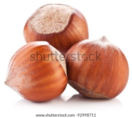 Three nuts filberts isolated on white background.