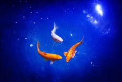 Three orange and white koi carp fishes closeup, navy blue sea background, goldfish swims in pond, night moonlight glow shiny stars, artistic galaxy fantasy illustration, constellation sign, copy space