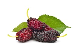 Three organic Mulberry fruits with green leaves isolated on white background.