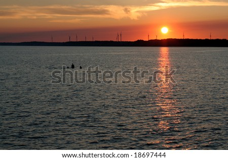 Three people swimming at dusk, with the setting sun and wind turbines in the background.