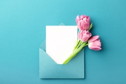 Three pink tulips in turquoise envelope on turquoise background. Mockup with white card. Flat lay, top view.