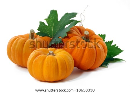 Three pumpkins and leaves, isolated.