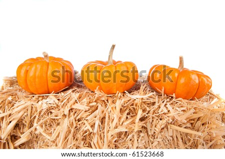 Three pumpkins on a haystack with white background for copy.