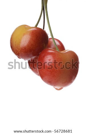 Three Ranier cherries with water droplets against a bright white background.