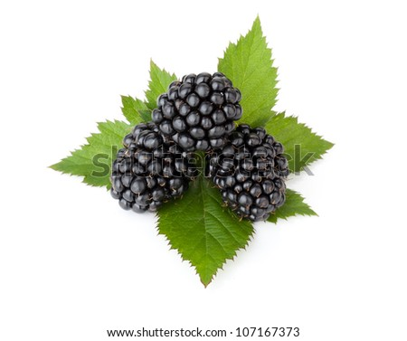 Three ripe blackberry with leaves. Isolated on a white background