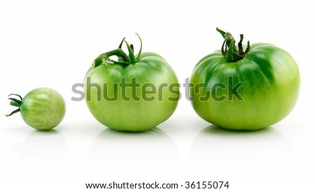 Three Ripe Green Tomatoes in Row Isolated on White Background