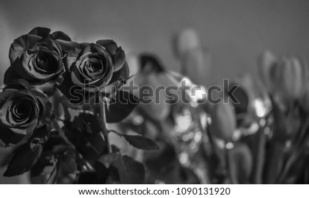 Three roses in black and white
