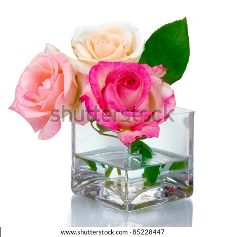 Three roses in transparent vase isolated on white