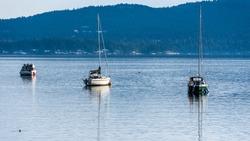 Three sailboats at their moorings in Mill Bay