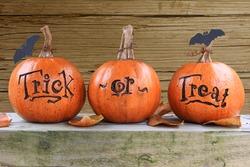 Three small trick or treat pumpkins.