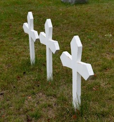 three small white crosses in grave in rural cemetery green brown grass crosses painted white signifying young graves or triplets  old gravesite in rural Ontario pointed ends of small crosses in ground