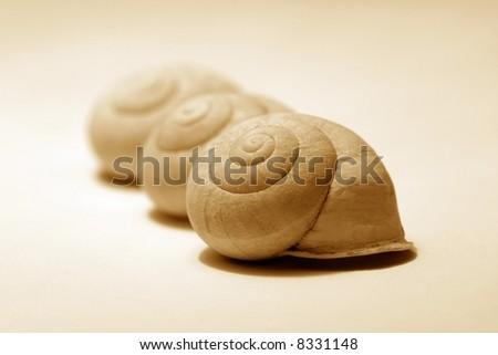 three snails