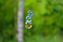 three soap bubbles isolated on green background. close-up. Three large soap bubbles float through the air against a blurred natural background. holiday concept, summer, childhood