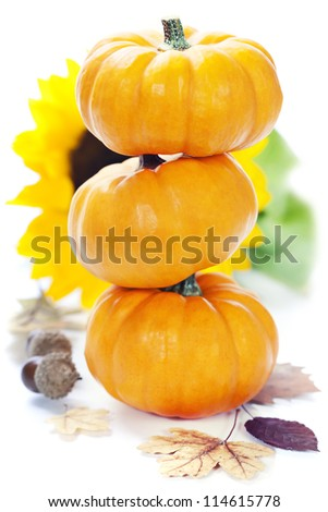 Three stacked mini pumpkins with fall leaves over white