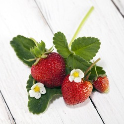 three strawberries with leaves and blossoms arranged on woodensurface