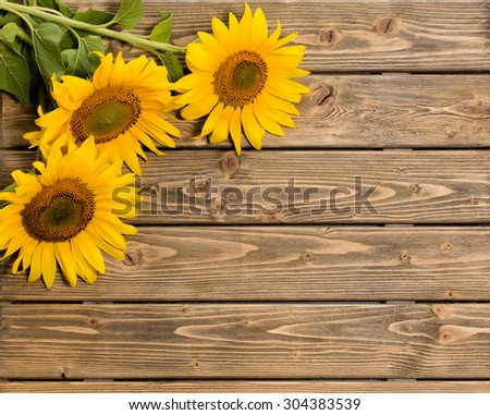 Three Sunflowers Are On The Wooden Background These Flowers Represented At Left Top Corner