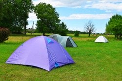Three tents on meadow with green trees on background in sunny summer day with copy space for text on grass. Traveling, camping and hiking concept.