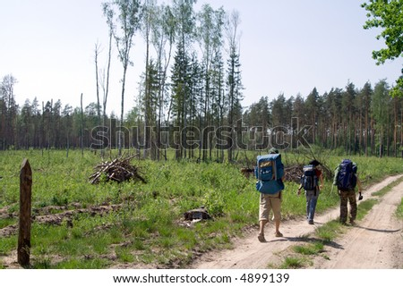 Three tourists walking on the road at wood.
