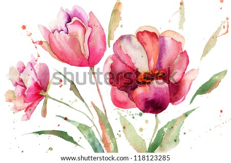 Three Tulips flowers, watercolor illustration