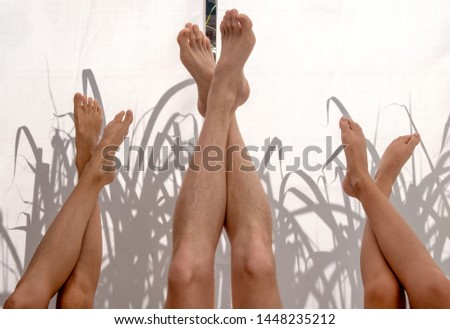 three upturned pairs of legs in front of illuminated fabric background with shade of reeds