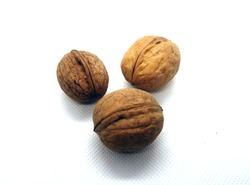 Three wallnuts on white. Food and ingredients background.