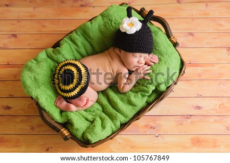 Three (3) week old newborn baby girl wearing a crocheted black and yellow bumblebee costume. The infant is sleeping on a green blanket inside of a basket.